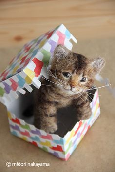 Needle felted kitten - what an adorable expression on this baby's face!