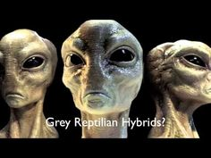 REPTILIANS: The ELITE Are Alien Grey / Dinosaur HYBRIDS!!!  ALIEN SPECIES - YouTube