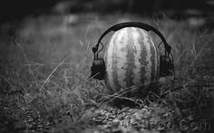 http://www.wallcoo.net/nature/lomo_lomography_snap_shot_02_1920x1200/images/summer_melon.jpg