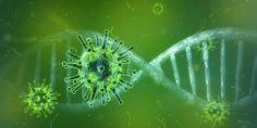 Beste klanten, leveranciers,Connectivity Solutions wil meewerken om de verdere verspreiding van het coronavirus tegen te gaan.Wij denken hierbij aan iedereen maar vooral aan onze eigen medewerkers en hun naasten.Na grondig intern overleg hebben we beslist om alle niet-essentiële activiteiten stop te zetten.Dit zal ingaan op maandag 23 maart 2020 tot en met zondag 05 april 2020 of tot nader order.We beseffen dat we, door deze beslissing, misschien een aantal afspraken niet kunne