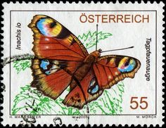 Everything's Coming Up BUTTERFLIES! - Stamp Community Forum - Page 5