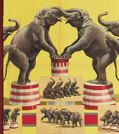 Vintage Elephant Circus Poster from Alternative Measures. Shop more products from Alternative Measures on Wanelo. Vintage Circus Posters, Vintage Circus Party, Circus Art, Circus Theme, Circus Room, Circo Vintage, Human Oddities, Vintage Elephant, Great Dane Puppy