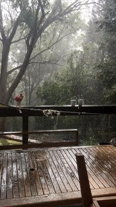 Aesthetic Photography Nature, Rain Photography, Nature Aesthetic, Landscape Photography, Beautiful Photos Of Nature, Beautiful Places To Travel, Nature Pictures, Wattpad Background, Rain Wallpapers
