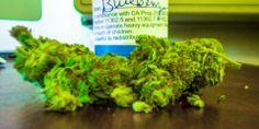 Some Blueberry Kush