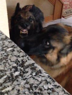 Durante el día, Keeper normalmente está harto del comportamiento del Riser.