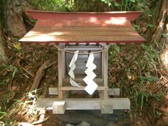 This is a Shinto shrine with paper streamers.  It is one main religion in Japan, it is a religion to respect nature. It is a easy and not strict religion because all you need to do is celebrate the holidays.