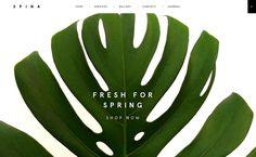 Spina Website Design - via Site Inspire