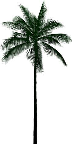 Palm Tree Outline, Tree Sleeve, Tattoos For Guys Badass, Tree Tattoo Back, Tree Photoshop, Palm Tree Vector, Coconut Palm Tree, Tattoo Lettering Fonts, Tree Tattoo Designs