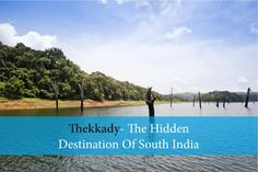 Thekkady- The Hidden Destination Of South India - Thekkady located in Idukki district of Kerala, India is the location of the Periyar National Park.