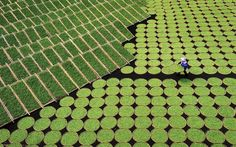 Fanjing Lu, China (Sony World Photography Awards - Open Competition, Travel) Photography Contests, World Photography, Photography Awards, Aerial Photography, Sony, No Photoshop, Local Photographers, 2017 Photos, What A Wonderful World