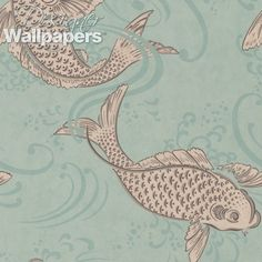 Osborne & Little Derwent - Free Next Day Delivery | Designer Wallpapers ™