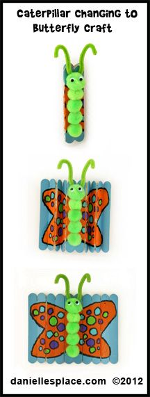 Caterpillar Changing to a Butterfly Craft: using pom poms, pipe cleaners,and popsicle sticks, children can create a caterpillar with unfolding butterfly wings. A great tutorial that will fit right in with your Montessori zoology unit.