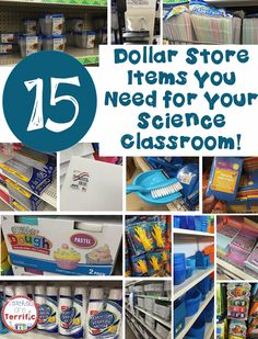 15 Supplies You Need from the Dollar Store with tips and hints about what not to buy there! Great for Science materials! - Teachers Are Terrific