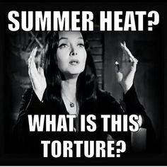 I hate summer. discovered by sunny on We Heart It Morticia Addams, Gomez And Morticia, Goth Humor, Goth Memes, Hate Summer, Summer Heat, Groucho Marx, Goth Quotes, Dark Quotes