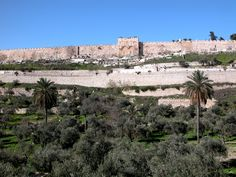 Jerusalem's Eastern (or, Golden) Gate as seen from the Garden of Gethsemane, across the Kidron Valley