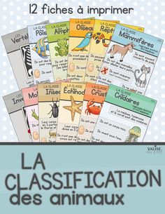 Affiches sur la classification des animaux. French posters