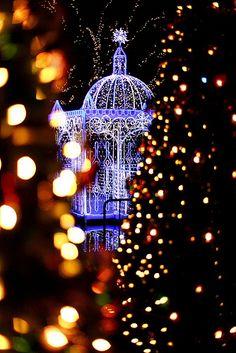 Christmas Illumination, Fukuoka, Japan