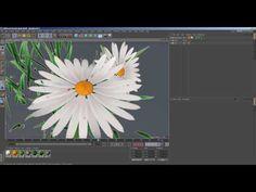 flower 04 model in c4d free download (file) - YouTube