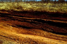 dirt road... this was all caked up last year when I took shots out there...