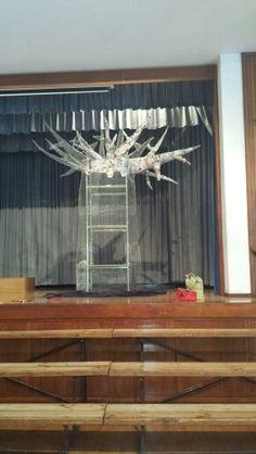 Starting the Magic Baobab Tree Baobab Tree, Magic