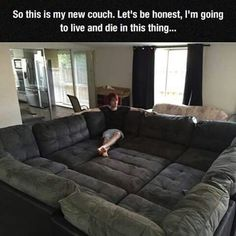Funny pictures about The Couch Of My Dreams. Oh, and cool pics about The Couch Of My Dreams. Also, The Couch Of My Dreams photos. Really Funny Memes, Stupid Funny Memes, Hilarious, Funny Quotes, Modul Sofa, My New Room, My Dream Home, Funny Pictures, Funny Pics