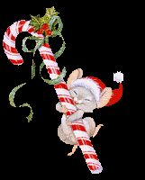 Free Christmas candy canes with holly, bows and ribbons. Plus, candy canes with attitude and style such as dancing and ice skating. Animated candy canes with Christmas lights and candy cane clipart. Christmas Candy, Christmas Art, Christmas Movies, Animated Christmas Pictures, Cute Disney Drawings, 1 Gif, Christmas Graphics, Glitter Graphics, Christmas Illustration