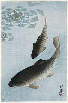 hanga gallery . . . torii gallery: Carp swimming by Watergrass by Ohara Koson