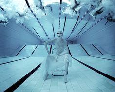 Underwater Photography by Zena Holloway.