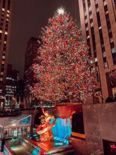 New York at Christmas, inspiration for Chloe and Hunter in Just Home for the Holidays, a #Christmas #romancenovella and #7 of the #FlatironFiveFitness series of contemporary romances by #DeborahCooke