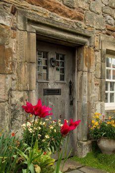 Flowers at My Door, St. Andrews, Scotland (77 pieces)