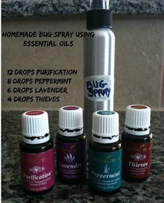 What you'll need  4 oz glass or stainless steel spray bottle  12 drops Purification  8 drops Peppermint  6 drops Lavender  4 drops Thieves  1/2 ounce witch hazel (optional – gives it staying power)  Filtered water  Put the essential oil drops in first, then add the witch hazel if you choose and fill with filtered water. Shake well, spray liberally and feel good about the fact you are not covering yourself in toxic chemicals