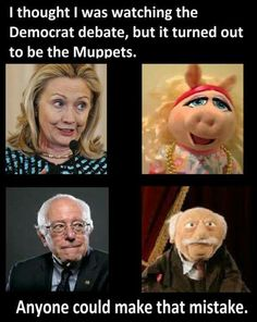 Democrats or muppets? Patriotic Words, Conservative Memes, Funny Quotes, Funny Memes, Badass Quotes, It's Funny, Awesome Quotes, Liberal Logic, Empire