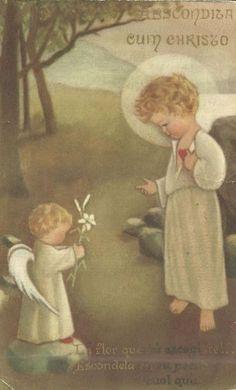† Livros Católicos para Download: Catequese dos Pequeninos 2 - Mons. Negromonte