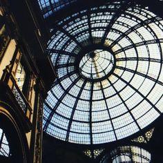 #sunlight #ruff #nikon810 #nikon_photography #Milan #italy by ronikanicha #sunlight #ruff #nikon810 #nikon_photography #Milan #italy
