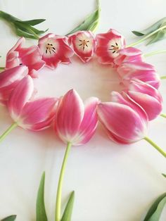 Different Flowers, Pretty In Pink, Beautiful Flowers, Tulips Garden, Planting Flowers, Pink Tulips, Pink Flowers, Spring Aesthetic, Floral Wreath