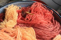 A great natural dye blog!