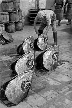 Tuna Die-Cutting by a Fisherman, 1956 - Photo by Rene Burri, Favignana island, Sicily, Italy. Fishing Photography, Street Photography, Art Photography, Old Pictures, Old Photos, Vintage Photographs, Vintage Photos, Quelques Photos, Vintage Italy