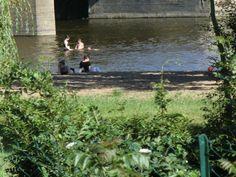 Plage de baignade du Louet au camping Les Plages de Loire à Rochefort sur Loire, Pays de la Loire