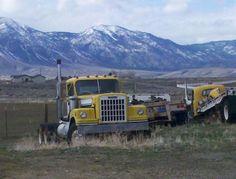 Vintage Trucks, Old Trucks, Western Star Trucks, Truck Flatbeds, White Truck, Road Train, Abandoned Cars, Barn Finds, Semi Trucks