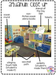 Ocean theme: Aquarium exhibits (student created) in the dramatic play center.Pocket of Preschool by sonja Dramatic Play Themes, Dramatic Play Area, Dramatic Play Centers, Ocean Activities, Preschool Activities, Preschool Playground, Preschool Teachers, Role Play Areas, Underwater Theme