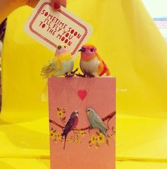 Love birds, notelets and greetings card. Perfect for Valentine's.