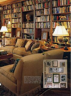 Bookshelves covering the walls