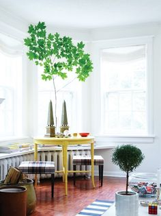 Habitually Chic®  » Tommy's Turf