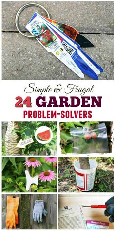 Sometimes the solution to your garden problem is right in your kitchen drawer!