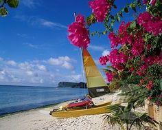 Guam - no place like home!