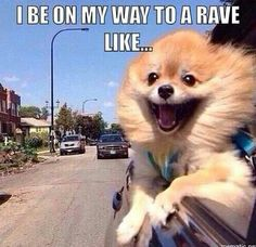 that will be me, on the way to electric forest! #ef2014