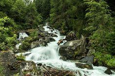 Mountain stream by Katarzyna Szymanska