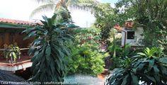 La Casa Fitzcarraldo, hotel que marcó historia en Iquitos. Dentro de la ciudad ruidosa y caótica de Iquitos, se rescata un pequeño oasis de selva que lo llaman la Casa Fitzcarraldo, una casa de alojamiento, donde puede disfrutar de la naturaleza, la comida, la fauna y flora de la zona.