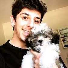 Image Result For Faze Rug Wallpaper Quotes Rugs Image