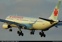 High quality photo of C-FYLU (CN: 179) Air Canada Airbus A340-313X by xiao min